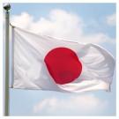 "Ex British Army 'Japanese' Flag - 9ft 6"" x 4ft 6"""